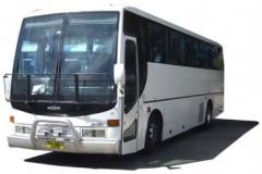 B-bus-01