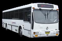 DSCF8981
