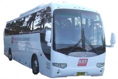 bus-33