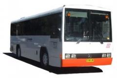 newbus02